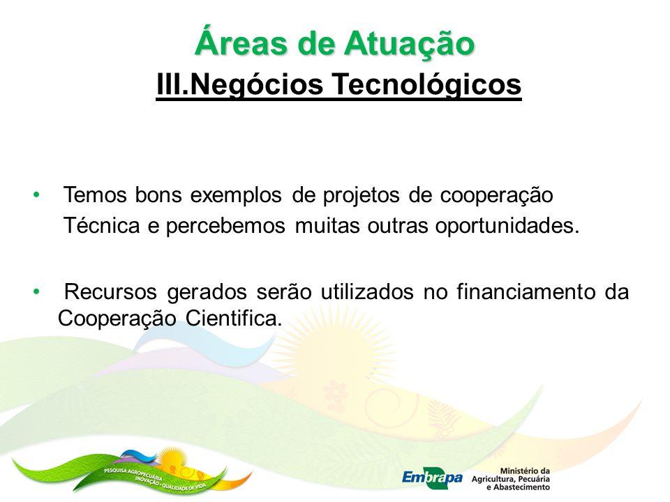 III.Negócios Tecnológicos