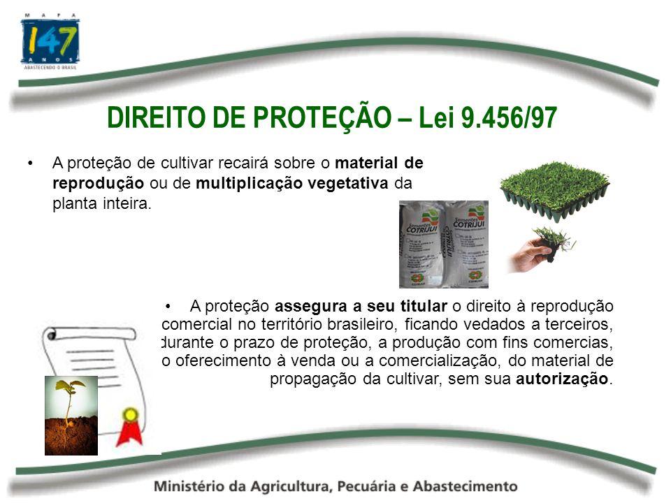 DIREITO DE PROTEÇÃO – Lei 9.456/97
