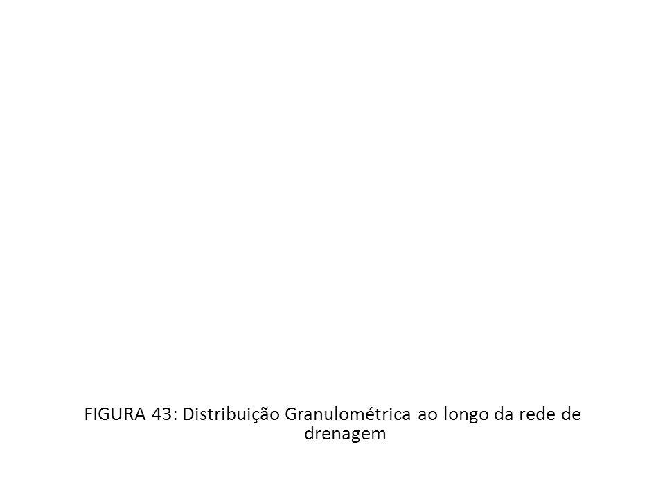 FIGURA 43: Distribuição Granulométrica ao longo da rede de drenagem