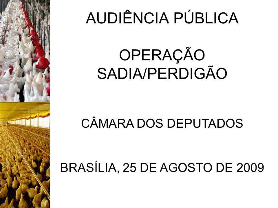 AUDIÊNCIA PÚBLICA OPERAÇÃO SADIA/PERDIGÃO CÂMARA DOS DEPUTADOS