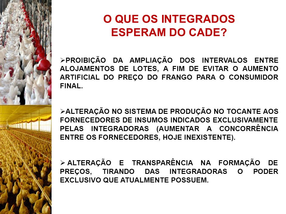 O QUE OS INTEGRADOS ESPERAM DO CADE