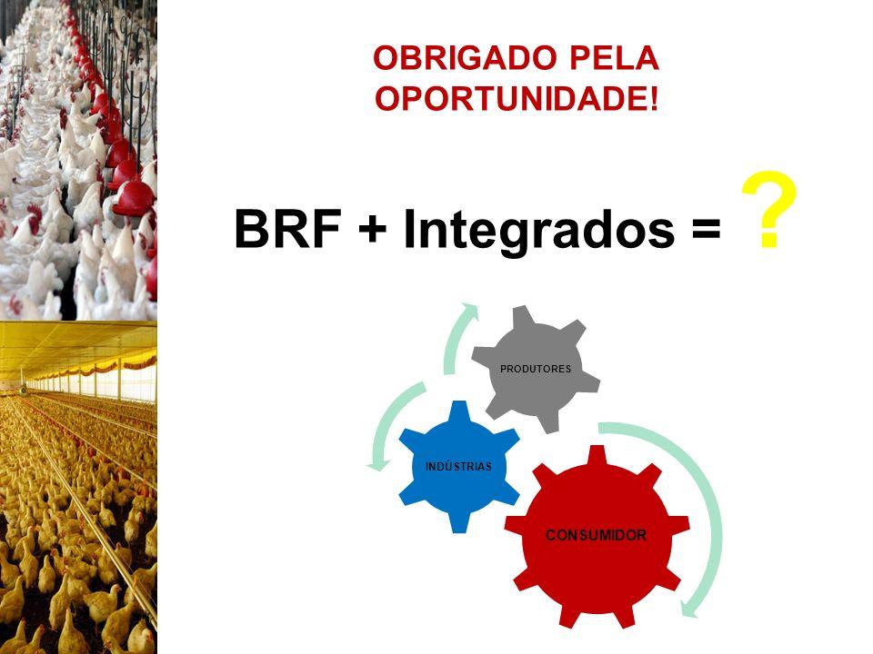 BRF + Integrados = OBRIGADO PELA OPORTUNIDADE! 25/08/09 CONSUMIDOR
