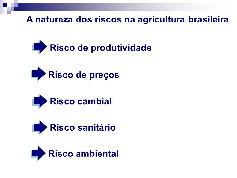 A natureza dos riscos na agricultura brasileira
