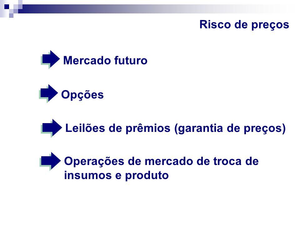 Risco de preços Mercado futuro. Opções.