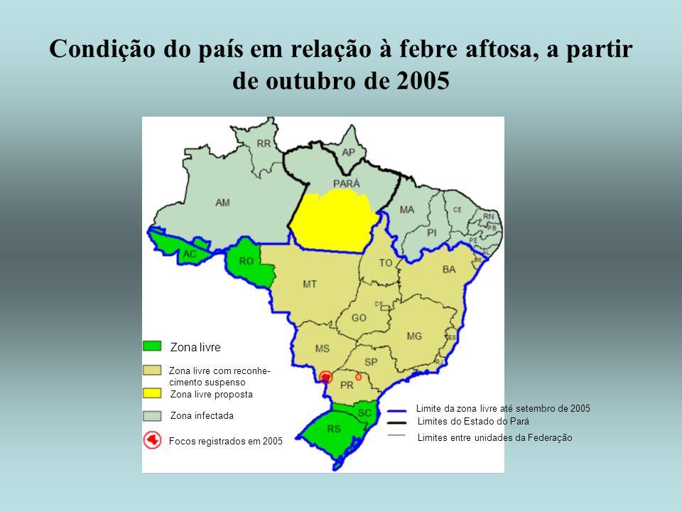 Condição do país em relação à febre aftosa, a partir de outubro de 2005