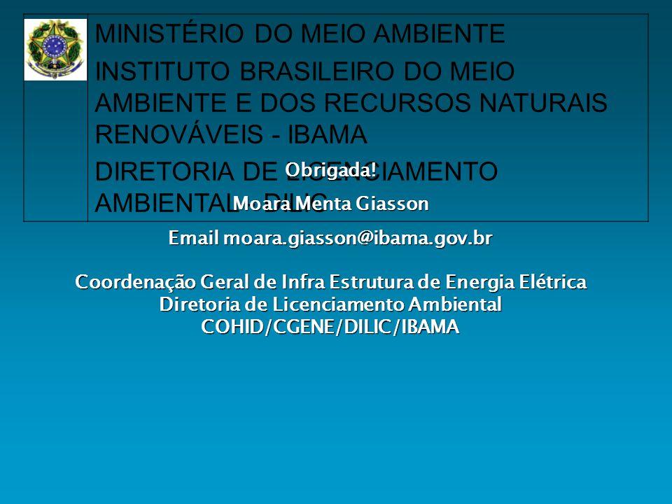 Email moara.giasson@ibama.gov.br