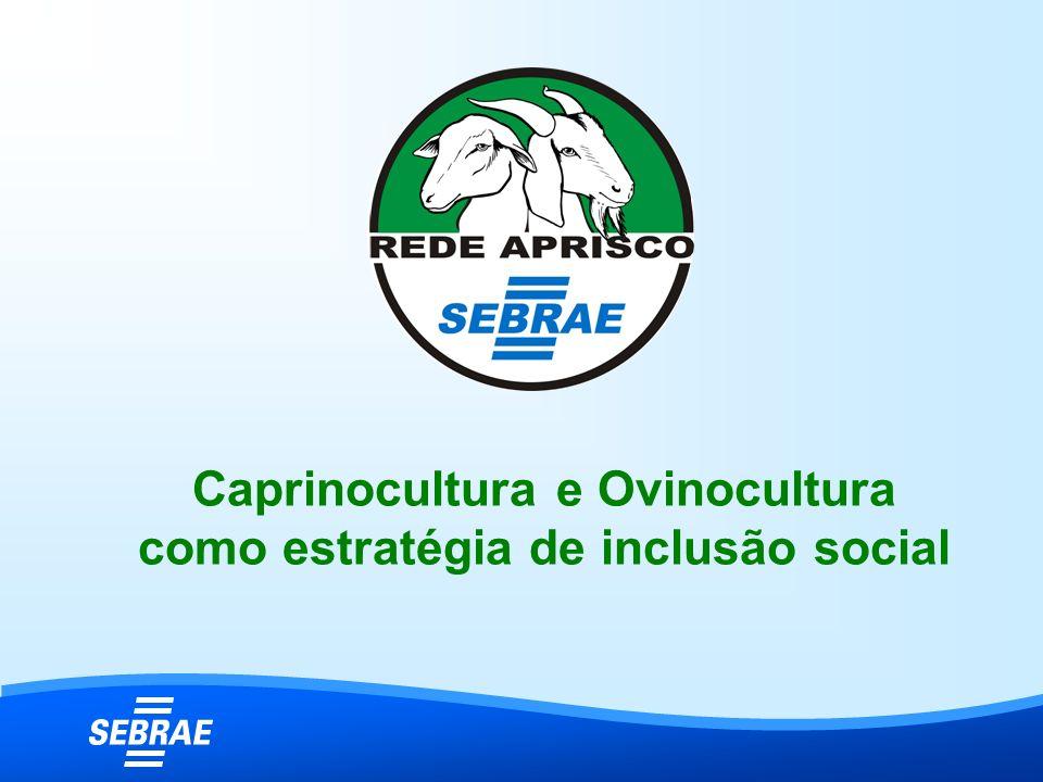 Caprinocultura e Ovinocultura como estratégia de inclusão social