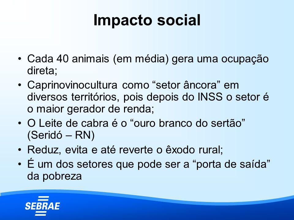 Impacto social Cada 40 animais (em média) gera uma ocupação direta;