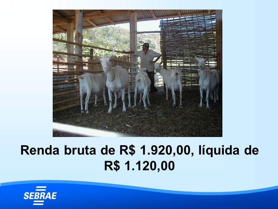 Renda bruta de R$ 1.920,00, líquida de R$ 1.120,00