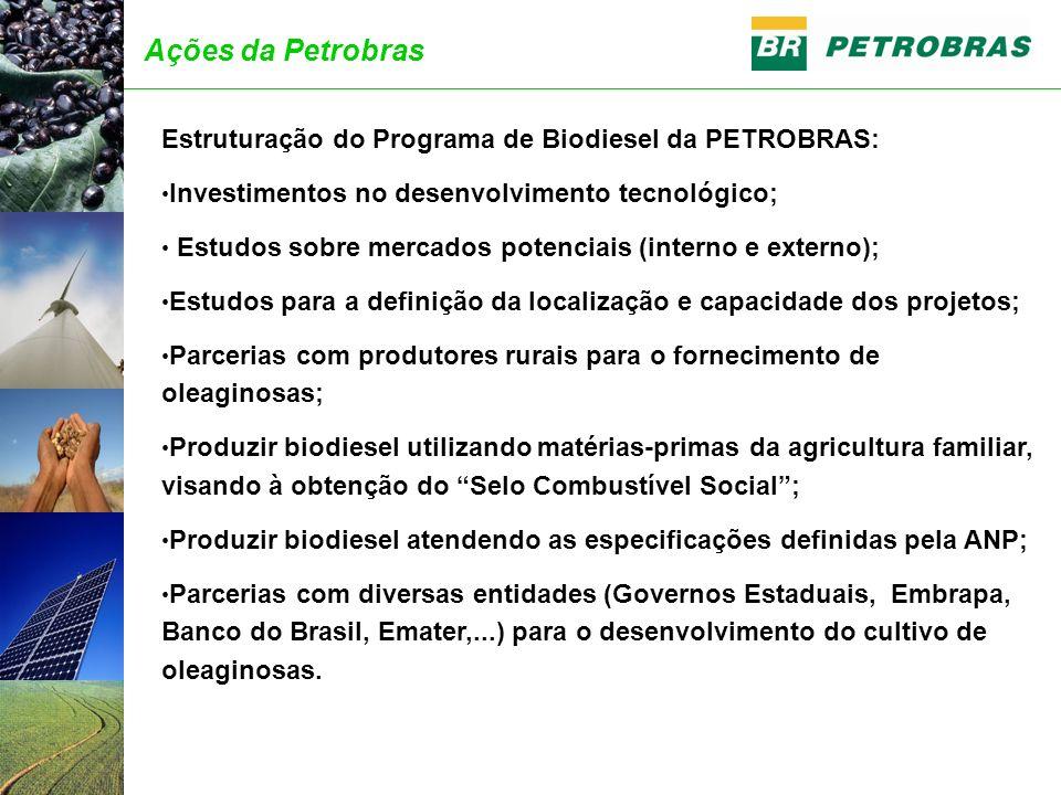 Ações da Petrobras Estruturação do Programa de Biodiesel da PETROBRAS: