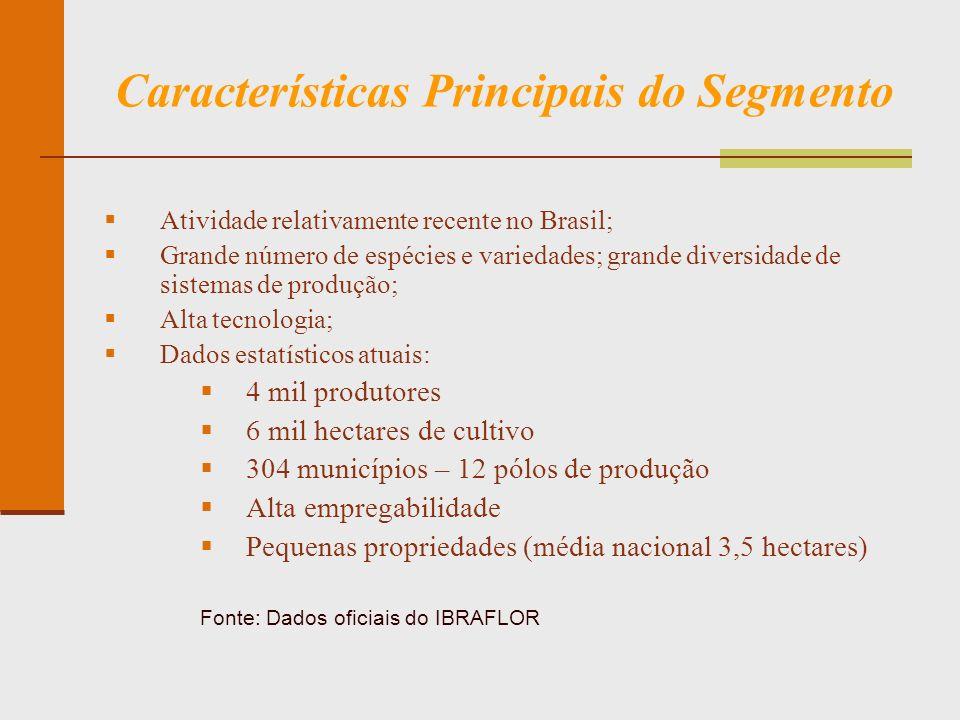 Características Principais do Segmento