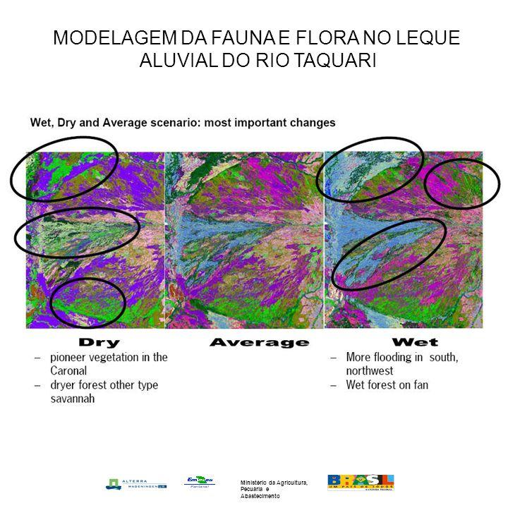 MODELAGEM DA FAUNA E FLORA NO LEQUE