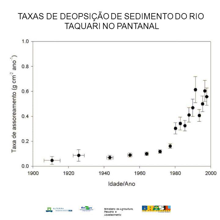 TAXAS DE DEOPSIÇÃO DE SEDIMENTO DO RIO