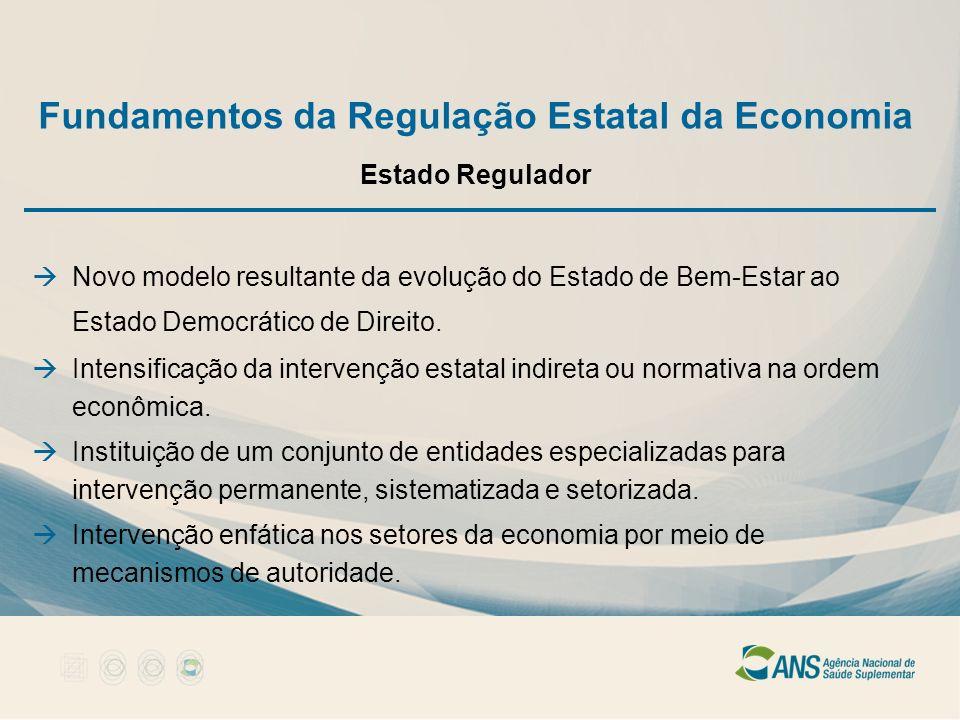 Fundamentos da Regulação Estatal da Economia