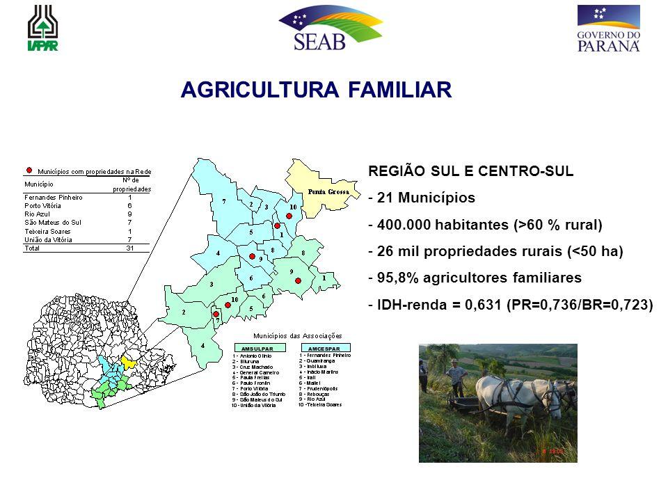 AGRICULTURA FAMILIAR REGIÃO SUL E CENTRO-SUL 21 Municípios