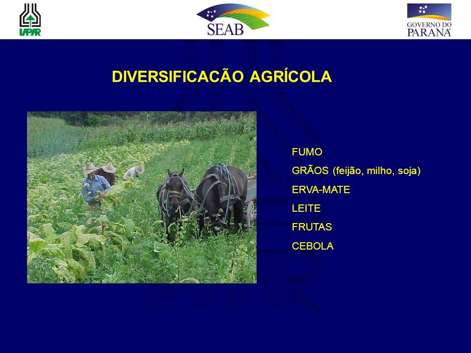 DIVERSIFICACÃO AGRÍCOLA