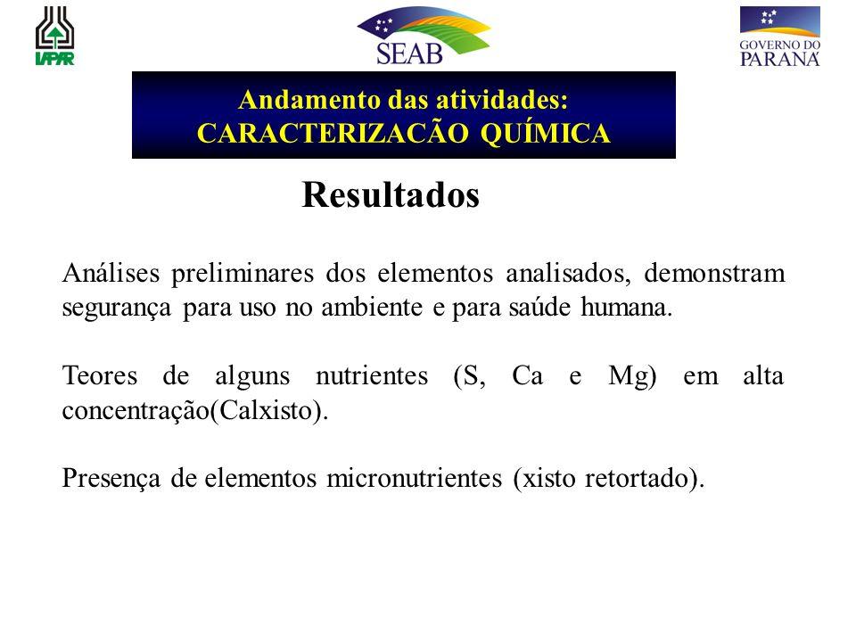 Andamento das atividades: CARACTERIZACÃO QUÍMICA