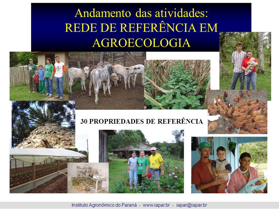 Andamento das atividades: REDE DE REFERÊNCIA EM AGROECOLOGIA