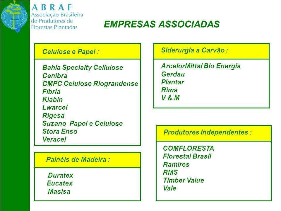 EMPRESAS ASSOCIADAS Produtores Independentes : Siderurgia a Carvão :