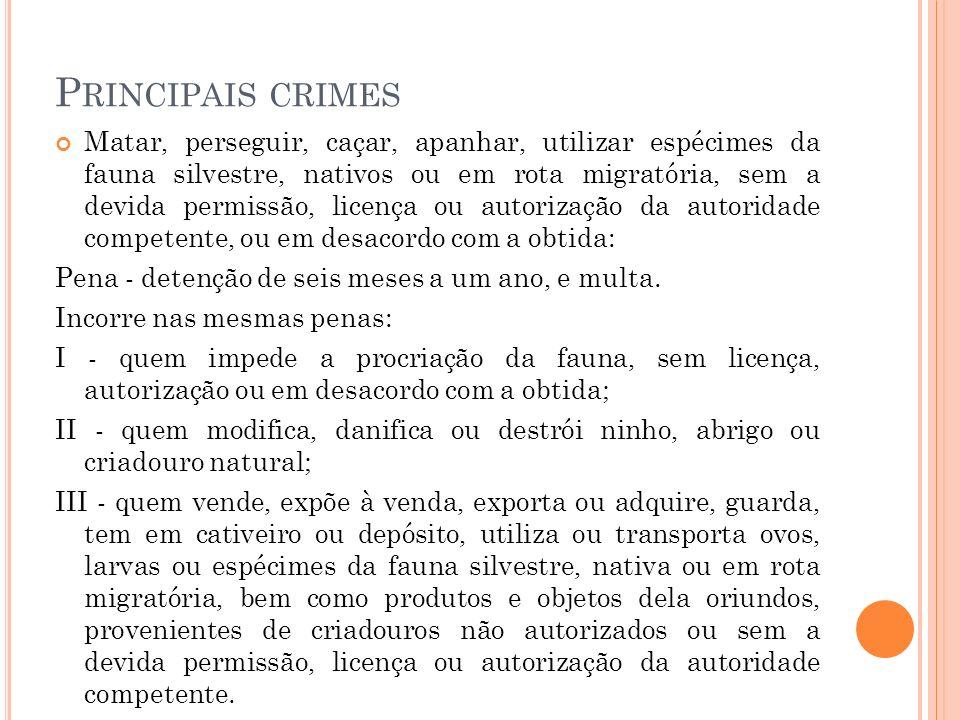 Principais crimes