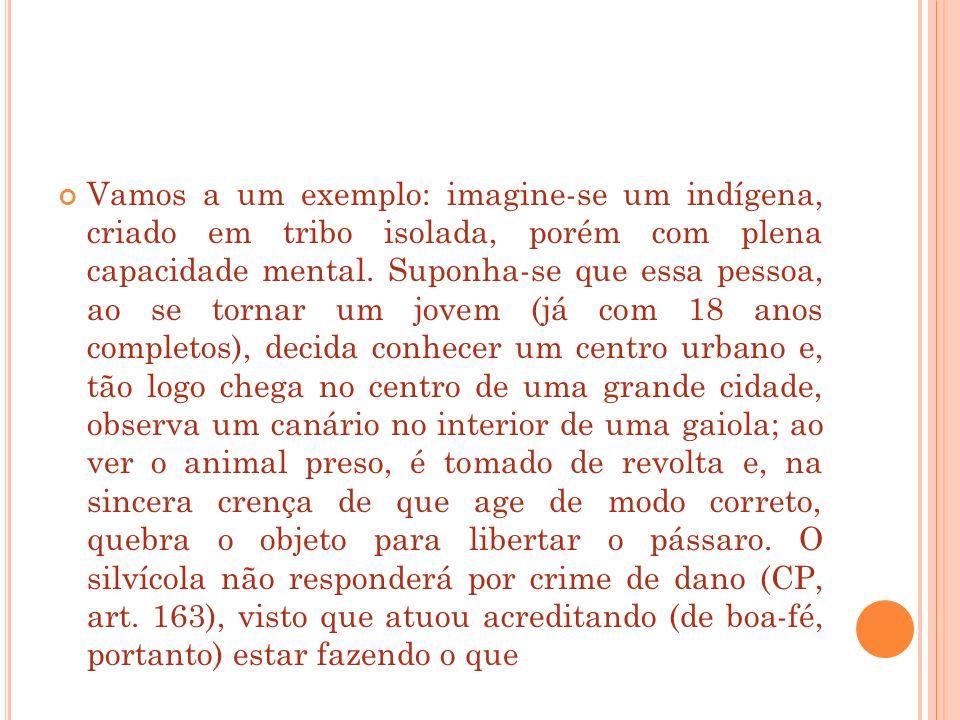 Vamos a um exemplo: imagine-se um indígena, criado em tribo isolada, porém com plena capacidade mental.