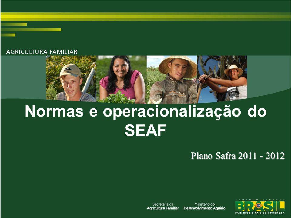 Normas e operacionalização do SEAF