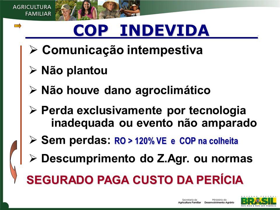 COP INDEVIDA . Comunicação intempestiva Não plantou