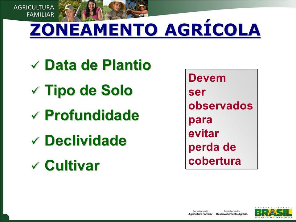 ZONEAMENTO AGRÍCOLA Data de Plantio Tipo de Solo Profundidade
