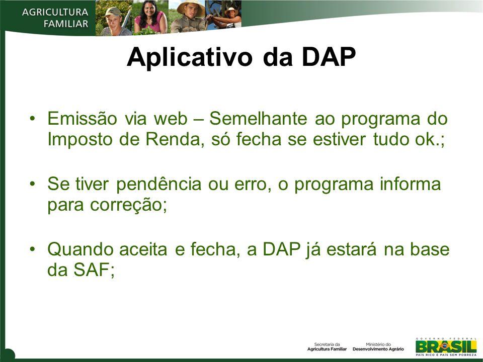 Aplicativo da DAP Emissão via web – Semelhante ao programa do Imposto de Renda, só fecha se estiver tudo ok.;