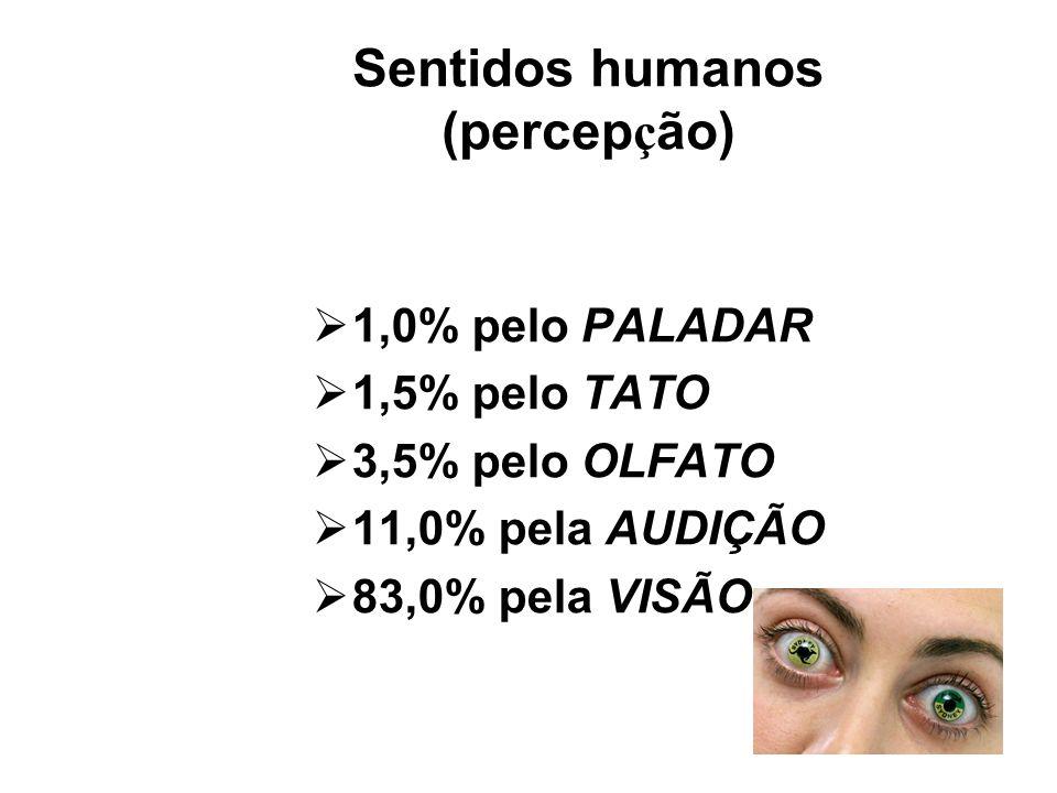 Sentidos humanos (percepção)