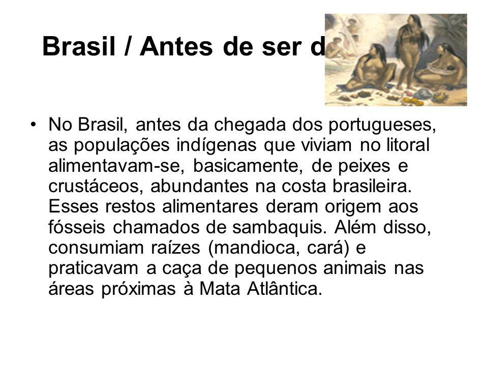 Brasil / Antes de ser descoberto