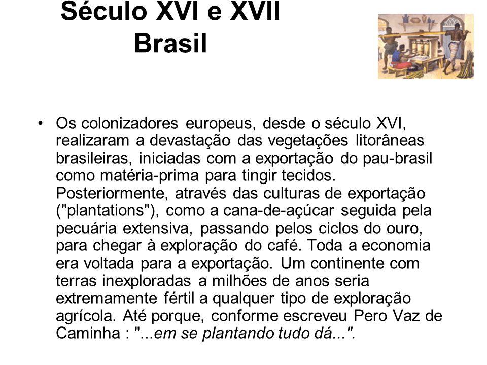 Século XVI e XVII Brasil