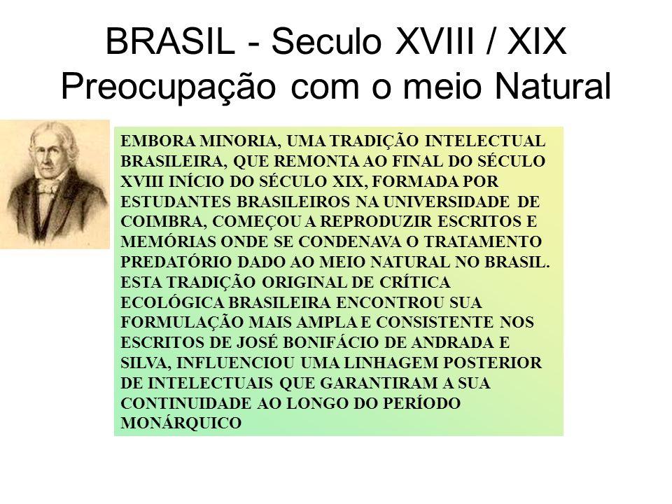 BRASIL - Seculo XVIII / XIX Preocupação com o meio Natural