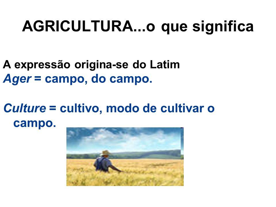 AGRICULTURA...o que significa