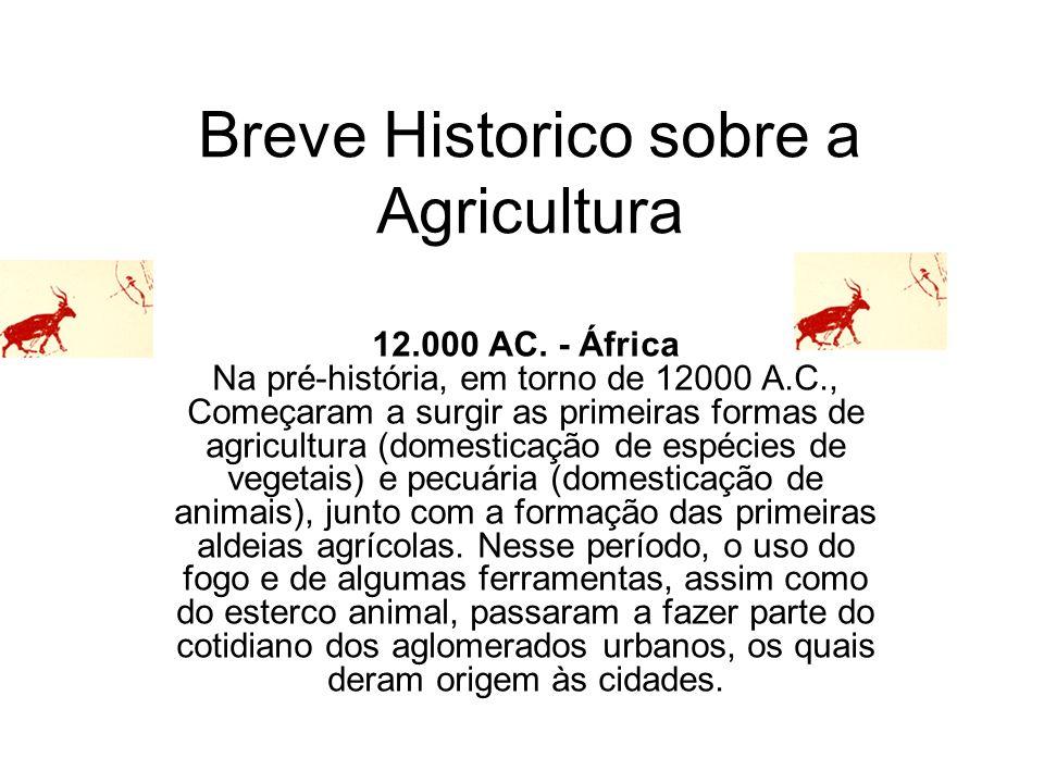 Breve Historico sobre a Agricultura