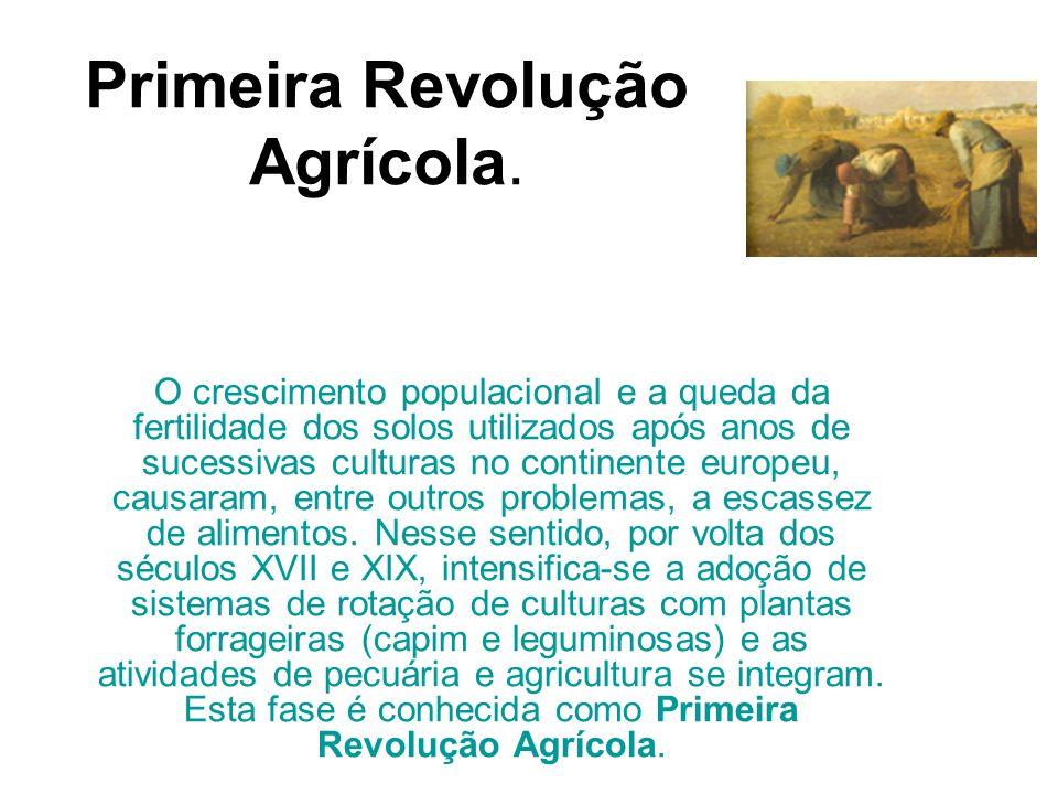 Primeira Revolução Agrícola.
