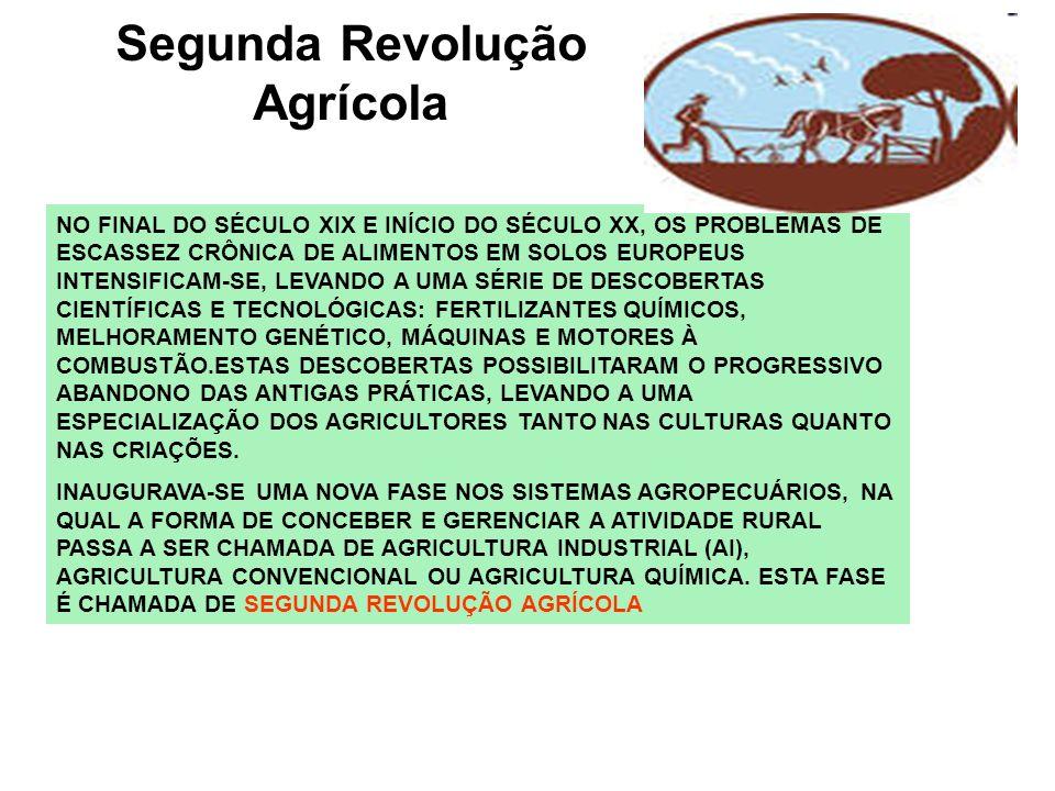 Segunda Revolução Agrícola