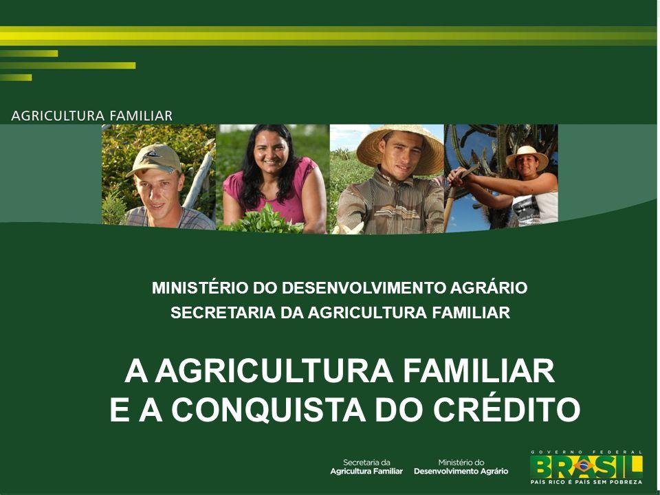 TÍTULO A AGRICULTURA FAMILIAR E A CONQUISTA DO CRÉDITO