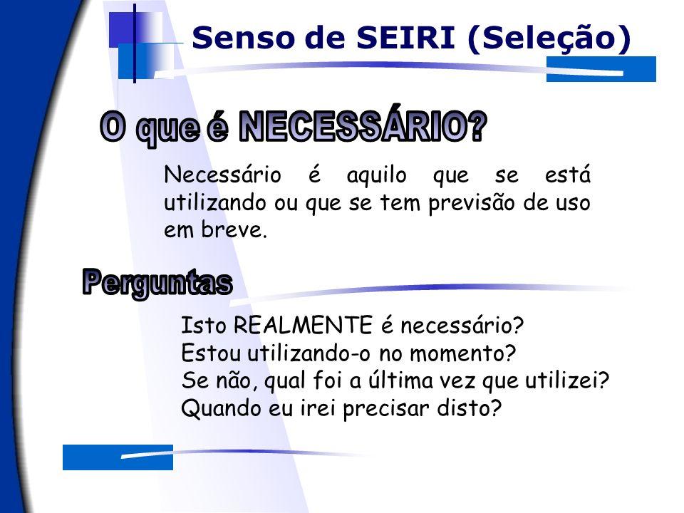 Senso de SEIRI (Seleção) O apoio computacional