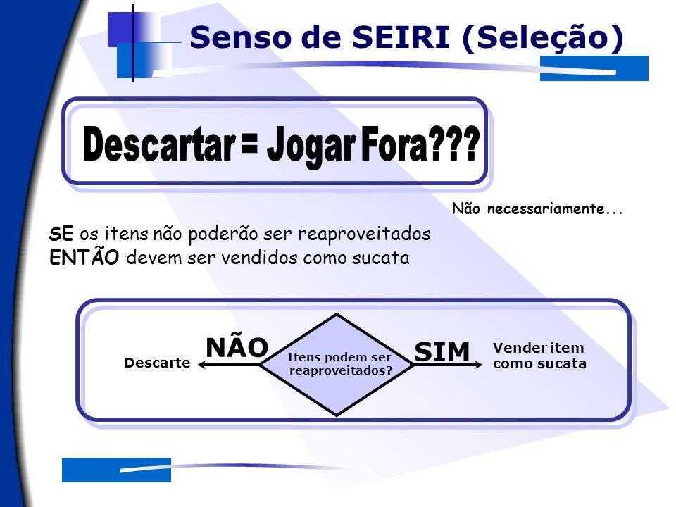 NÃO SIM O apoio computacional Senso de SEIRI (Seleção)