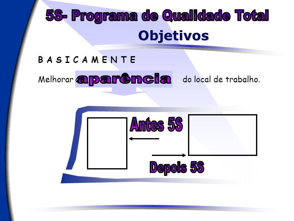 5S- Programa de Qualidade Total