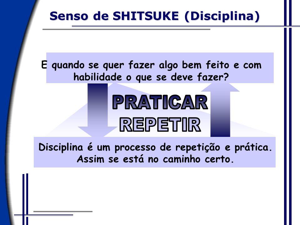 Senso de SHITSUKE (Disciplina)