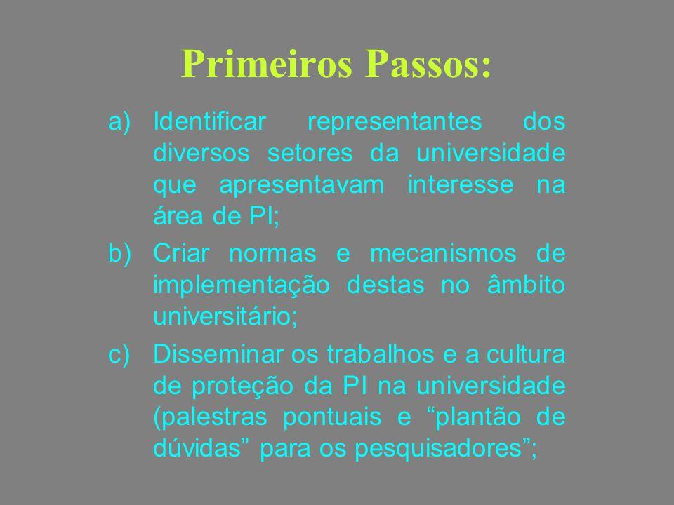 Primeiros Passos: Identificar representantes dos diversos setores da universidade que apresentavam interesse na área de PI;