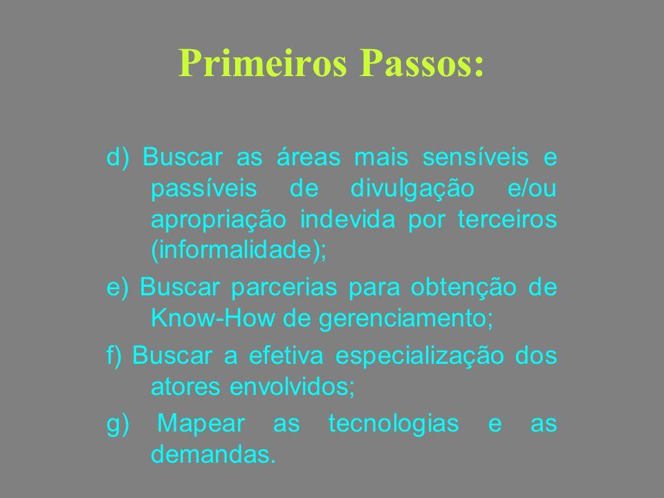 Primeiros Passos: d) Buscar as áreas mais sensíveis e passíveis de divulgação e/ou apropriação indevida por terceiros (informalidade);