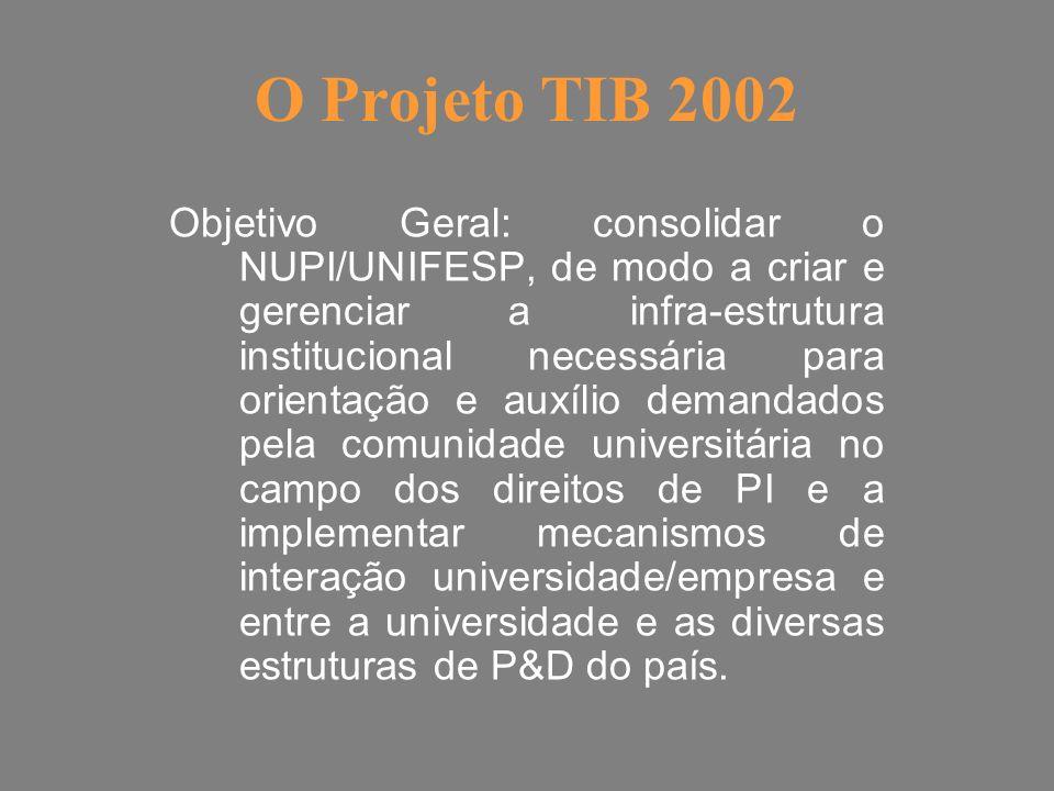 O Projeto TIB 2002