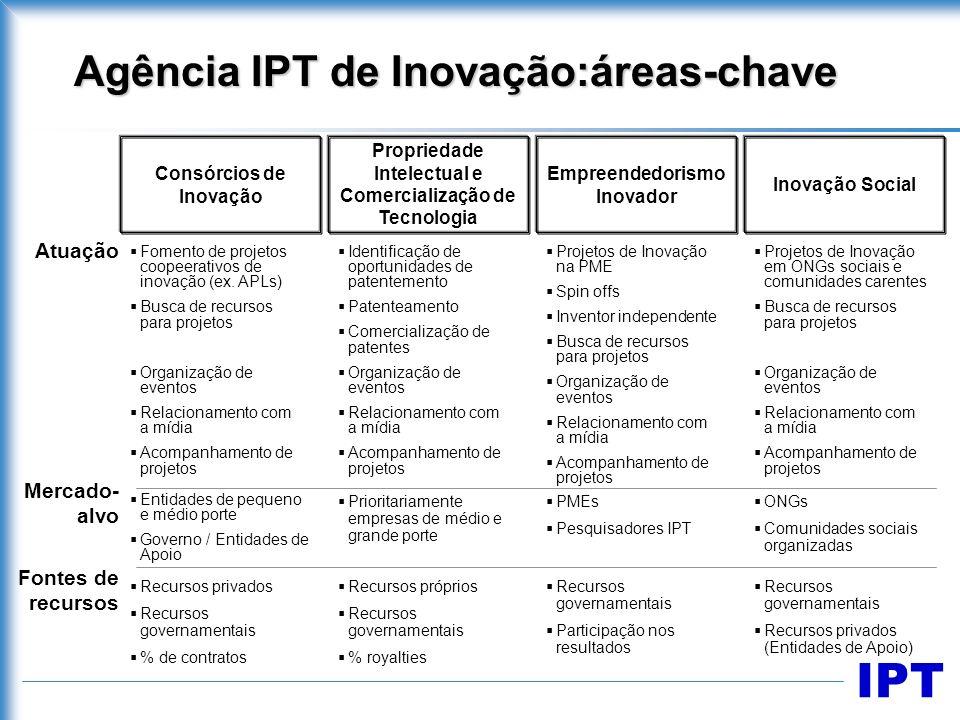 Agência IPT de Inovação:áreas-chave