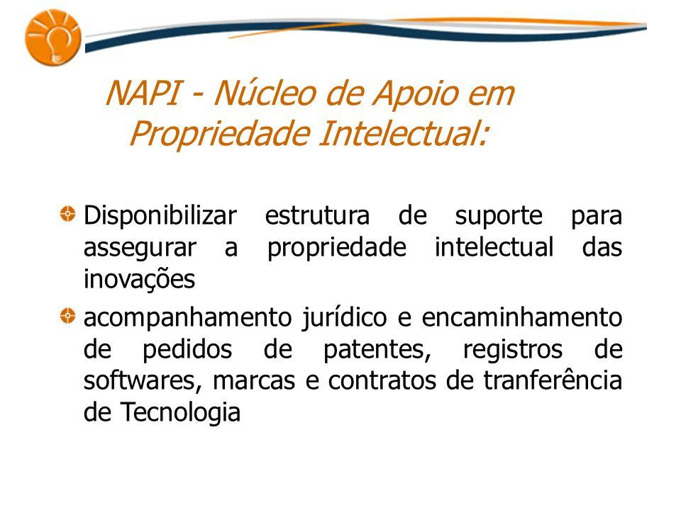 NAPI - Núcleo de Apoio em Propriedade Intelectual: