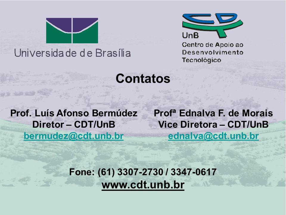 Contatos www.cdt.unb.br Prof. Luís Afonso Bermúdez Diretor – CDT/UnB