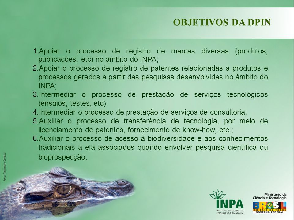 OBJETIVOS DA DPIN Apoiar o processo de registro de marcas diversas (produtos, publicações, etc) no âmbito do INPA;