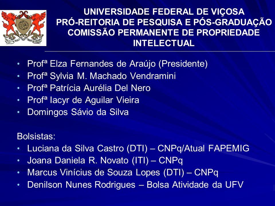 Profª Elza Fernandes de Araújo (Presidente)